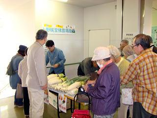 文化祭野菜販売写真
